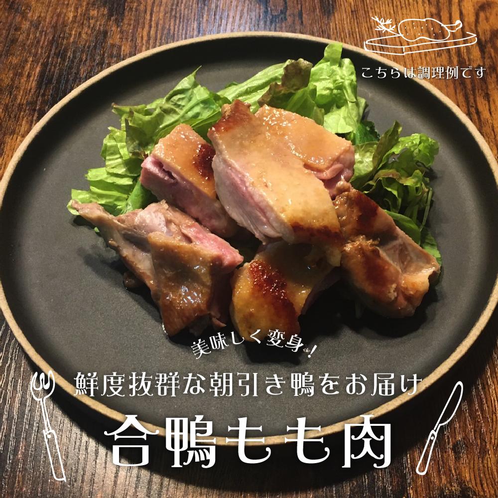 鳥豊_もも肉